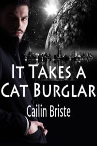 Book Cover: It Takes a Cat Burglar