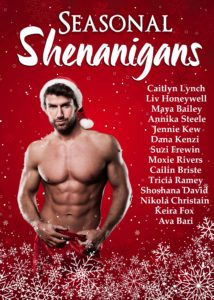 Book Cover: Seasonal Shenanigans: A Christmas Anthology